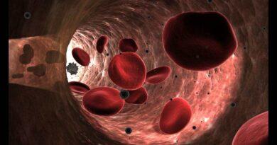 Normal Laboratory Values: Blood, Plasma, and Serum